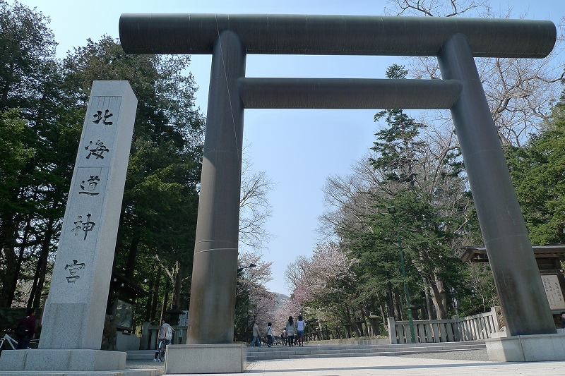 北海道神宮 桜_d0080785_935365.jpg