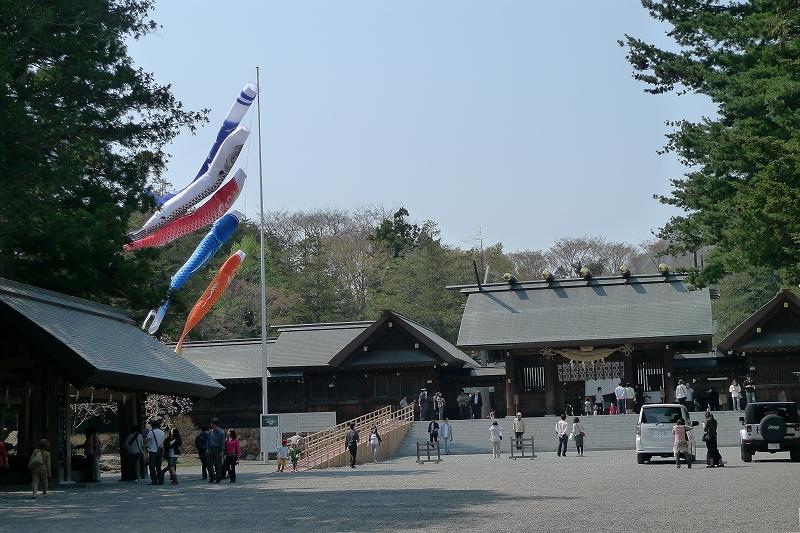 北海道神宮 桜_d0080785_942113.jpg