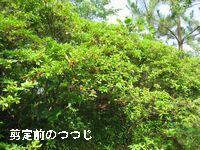 f0053885_2215929.jpg