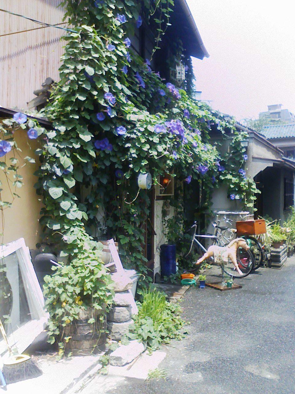 ●中崎町、白昼の徘徊。この奥行きは魔力的でもある。_c0061686_7405642.jpg