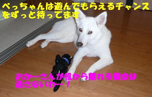 f0121712_11134660.jpg