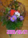 a0111618_1917532.jpg