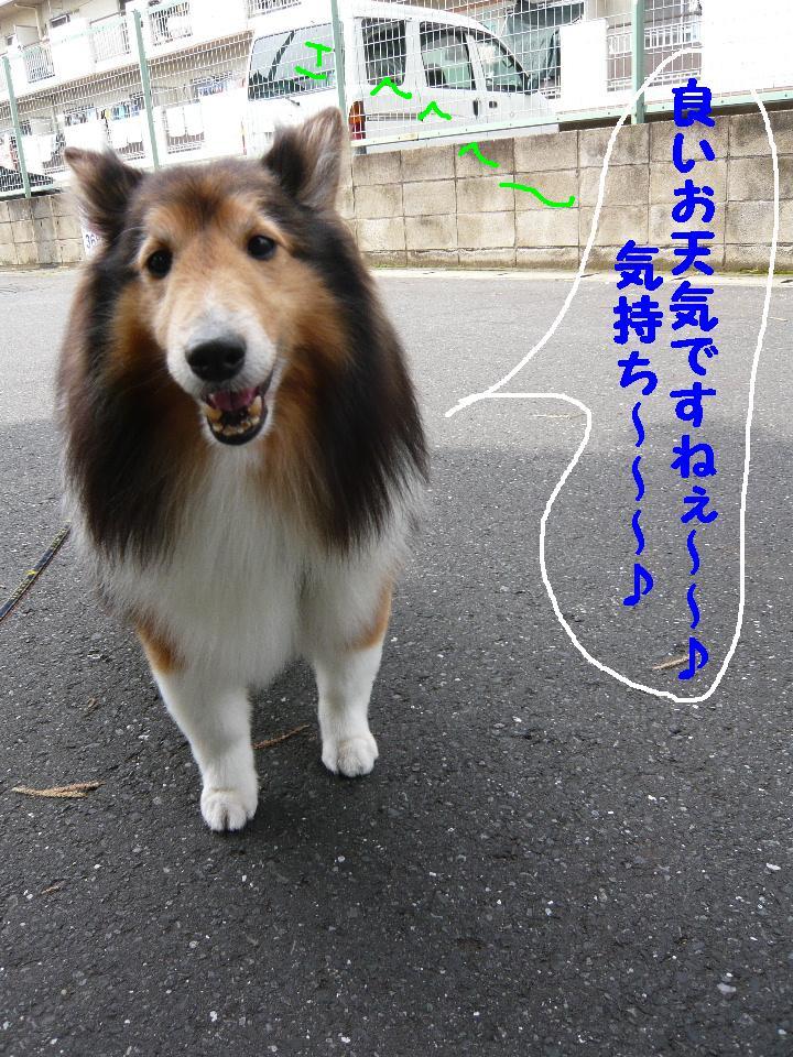 b0130018_14201134.jpg