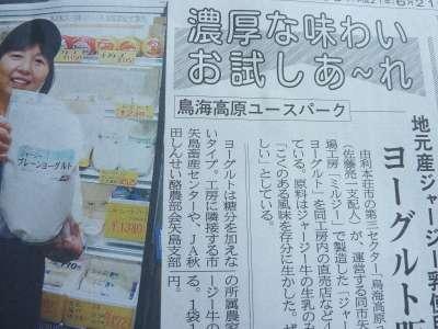 矢島町_b0084826_1016250.jpg