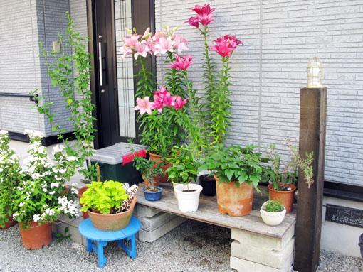 ガーデンライト_f0129726_21473230.jpg
