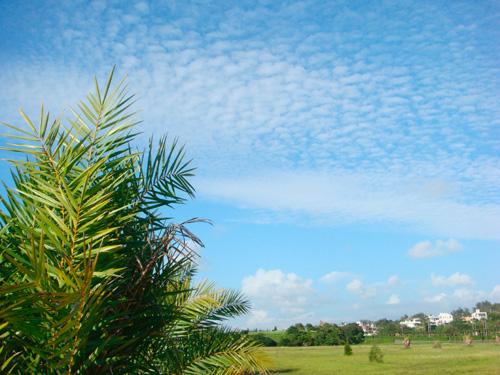 6月21日夏の雲~!_c0070933_18395988.jpg