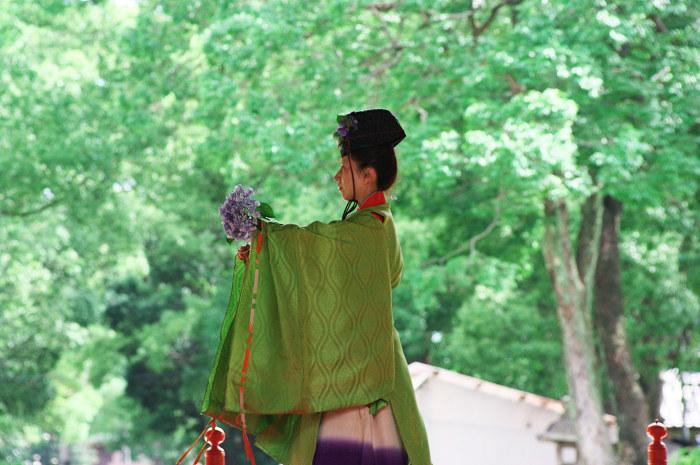 梅雨空の彩り その1(藤森神社)_f0155048_21311987.jpg