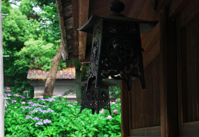 梅雨空の彩り その1(藤森神社)_f0155048_21394280.jpg