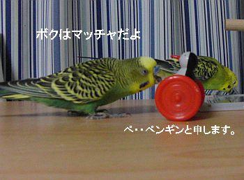 f0196665_0135032.jpg