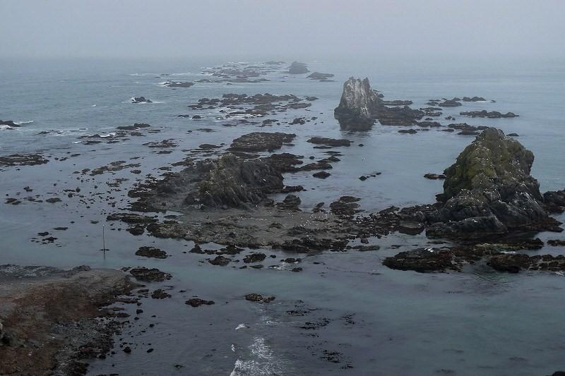右上の白い点々はゴマフアザラシ 400頭 襟裳岬 _d0080785_16281215.jpg
