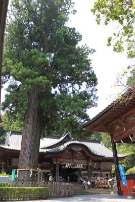 お立ち寄り下さい 北口本宮富士浅間神社_c0193896_21572695.jpg