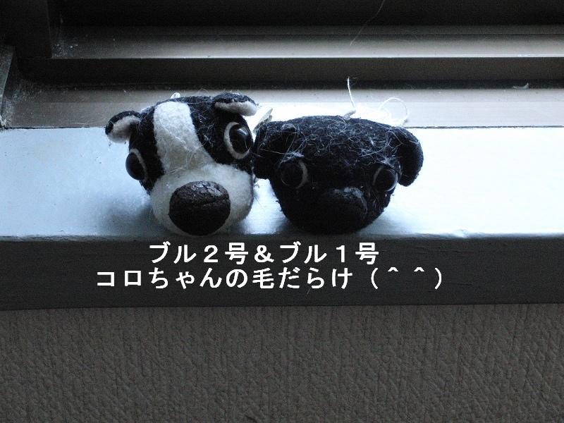 e0171996_1850115.jpg