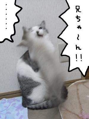 b0089737_005539.jpg
