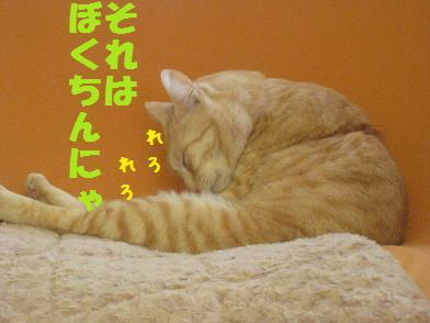 b0151748_13501459.jpg