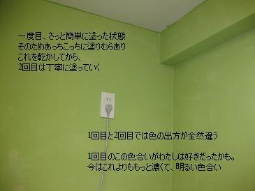 d0053873_831087.jpg