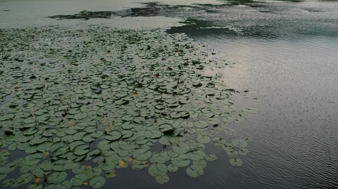 お松の池 南魚沼_e0174281_2395884.jpg