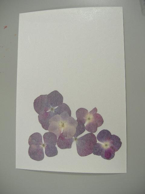 押し花ではがき作り♪_b0159098_9572234.jpg