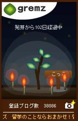 d0016727_2058967.jpg