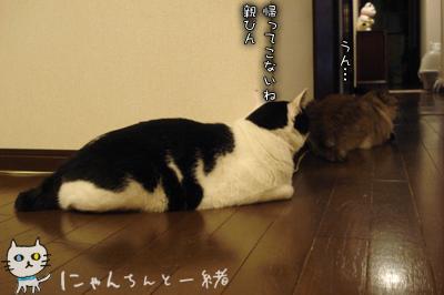 お別れの日_e0031853_17193881.jpg