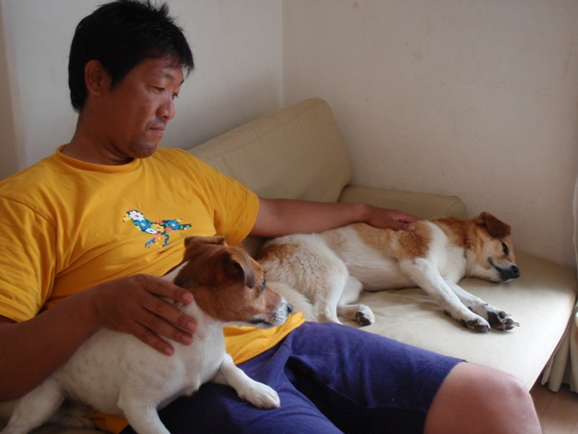 犬たちの下田_d0143957_1113293.jpg