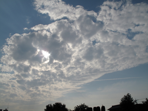 天行は健なり_d0130714_23383553.jpg