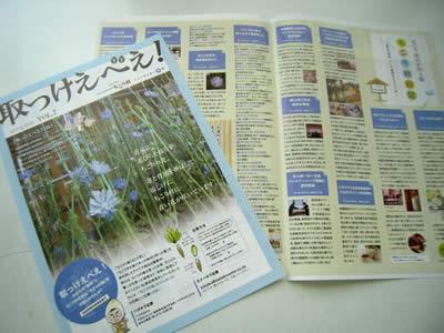 ちこり村ニュースレター「取っけえべえ!夏号」vol.7発刊_d0063218_16121984.jpg