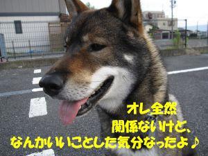 f0143123_2042184.jpg