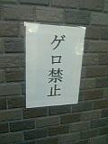 b0018242_65579.jpg