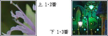 c0106443_14413751.jpg
