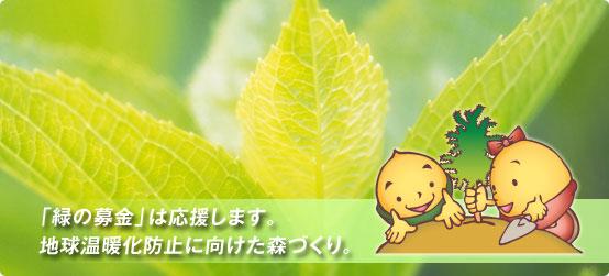 f0126949_22102688.jpg