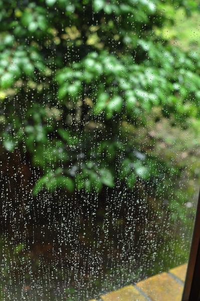 Rain Fall Down_a0003650_22182481.jpg