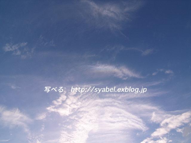 c0153764_17345669.jpg