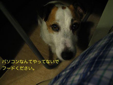 c0179472_17122636.jpg
