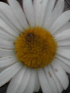 0905201.jpg