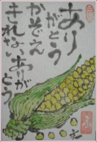 絵 手 紙 ( とうもろこし ) 391_b0104092_00711.jpg