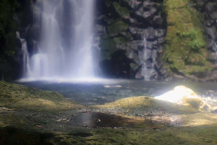 水だまり_e0135098_032091.jpg
