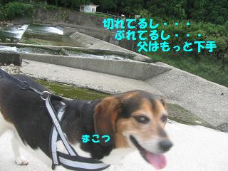 d0104209_19375197.jpg