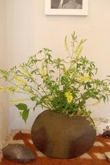 今日、最後の花活けを楽しみました。_a0112812_23171014.jpg