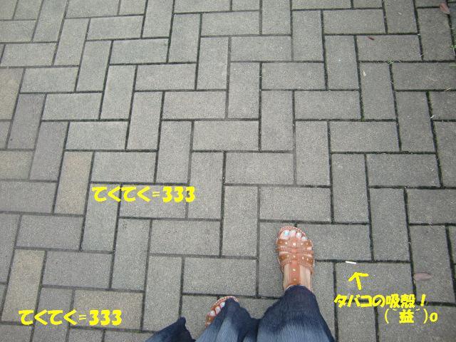 f0182121_952289.jpg