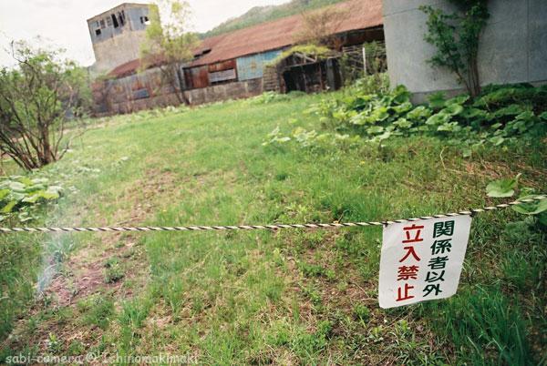 f0164826_050342.jpg