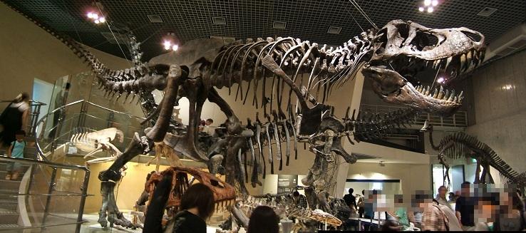 恐竜の骨格標本(上野科博)その2_e0089232_20364643.jpg