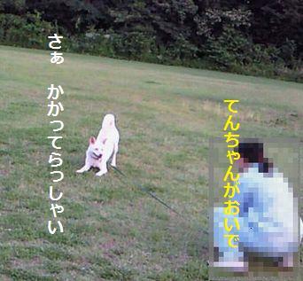 f0195543_21421618.jpg