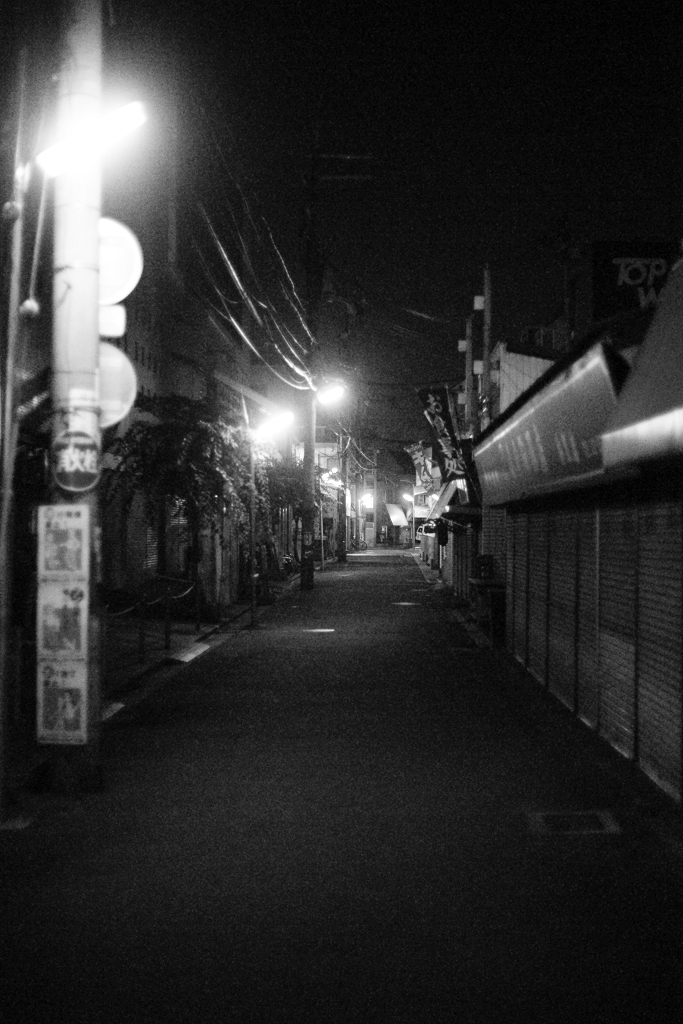 Night Walk_c0196354_12553375.jpg