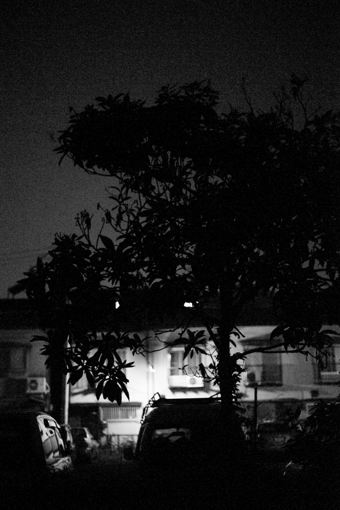 Night Walk_c0196354_1312391.jpg