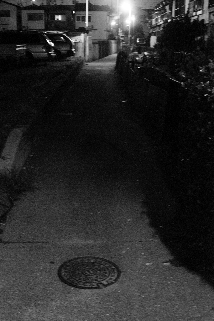 Night Walk_c0196354_1312947.jpg