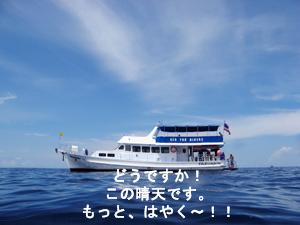 f0144385_1831064.jpg