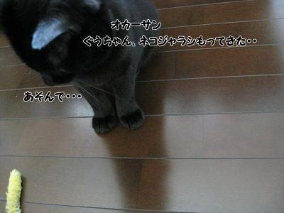 b0084186_10373197.jpg
