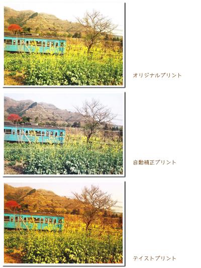 b0167887_11163630.jpg