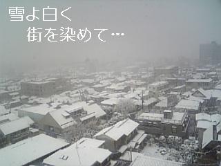 雪が街を純白に染めて…_b0183113_2252122.jpg