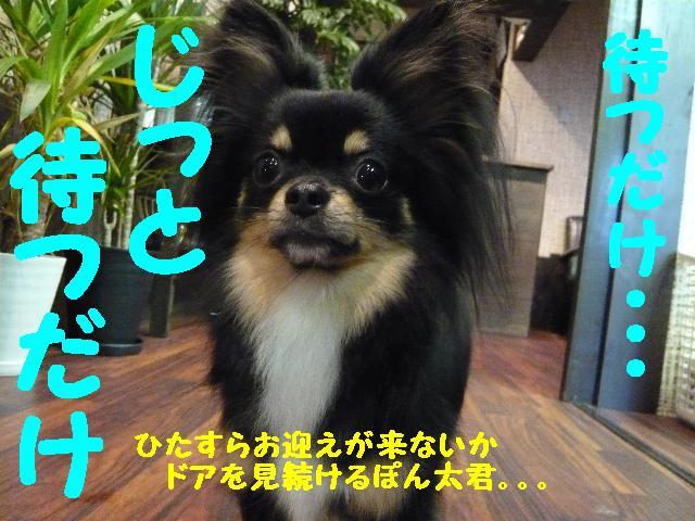 b0130018_12131768.jpg